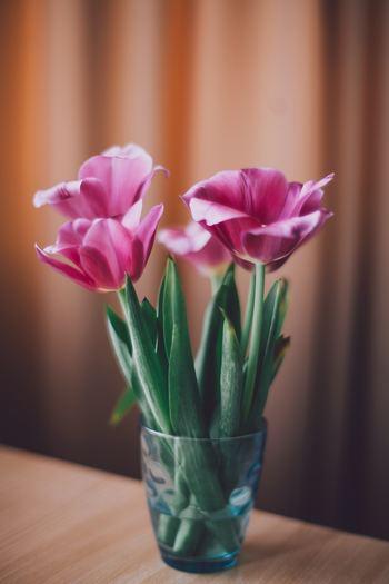 ある程度短く切りそろえ、いつものグラスを使ってディスプレイ。長さチェンジだけで存在感がぐっとアップしました!コツは交互に重なり合うよう茎を入れること。倒れないようにバランスを調整しましょう。