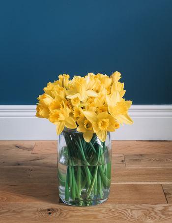 円柱の花瓶にたっぷりのスイセンをぎゅっと閉じ込めて。葉は綺麗に落としましょう。中がクリアに見えることで、よりスタイリッシュな雰囲気が醸し出されます。まるで一つのブーケのようですね。