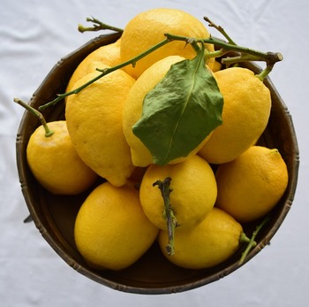 最後に、塩こしょうなどで味つけをして、すりおろしたレモンの皮とレモン汁を加えましょう。レモンは熱で風味が飛びやすいので最後に加えるのがポイントです。※レモンの皮も使う場合は国産のものを。有機栽培のものが望ましいです。
