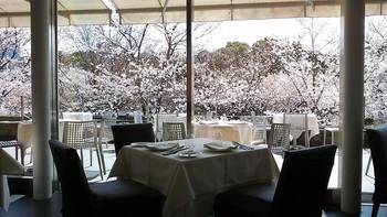 東京国立近代美術館の中にある、芸術的なフレンチをいただけるレストラン。テラス席もありますが、眺望がいいので、室内席からも、桜を見ることが可能です。
