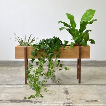 小さな鉢植えは、ポツンとひとつ置くよりもたくさん集めた方が、色や葉の形のバリエーションを楽しむことができますよ。