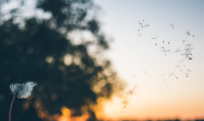 """今回は過去から逃げるのではなく、過去と向き合い、受け入れることで、""""執着""""から解き放たれるためのStepをご紹介します。きっと、心が楽になるはずです。  心の中に住みついた「過去」への執着にお別れして、前向きな一歩を踏み出すために。あえて、心のネックになっている「過去」と、少し向き合ってみませんか?"""