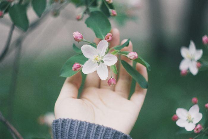 自分の幸せにコミットする生き方のヒントをご紹介しました。あなたを幸せにするのは、あなた自身です。今まで自分自身を縛りつけていた考え方をゆるめ、もっと自由になっていいのです。今回ご紹介したヒントをご参考に、あなたも自分の幸せにコミットする生き方を選んでみてくださいね。