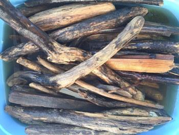 拾ってきた流木は、雑菌や虫が付いていることも。 使用前に洗って乾燥させておきましょう。  流水で流し洗いしながらタワシで擦り、皮を剥がしておきます。 煮沸消毒できるサイズなら、しておいたほうが安心ですよ。