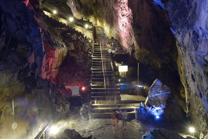 東京から車で1時間50分ほど。瀧谷洞と並んで関東で最大級と言われる日原鍾乳洞では、成長した石筍、石柱の数々が乱立する幻想的な世界を見ることができます。洞内は年間を通じて11度で、ひんやりとした心地よい空間になっています。