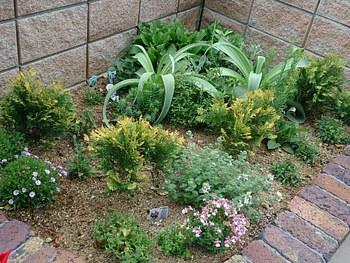 少ない植栽でも、厳選した植物を同系色でまとめるとセンス良く仕上がります。また、草花に高低差をつけると見た目も楽しく表情豊かになります。