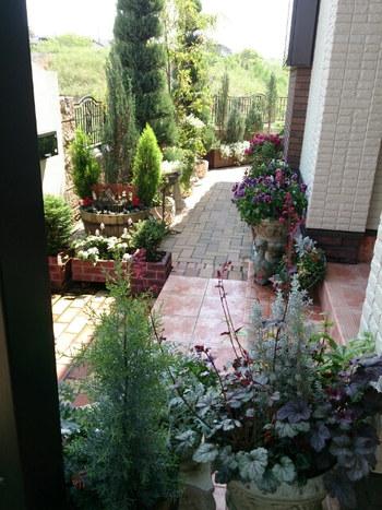 植物は生きもの。日々の水やりやお手入れが必要になります。住まいに潤いを与えてくれる植栽は、たくさん取り入れたくなりますが、選ぶ時には楽しく管理できる分量を意識してみてください。