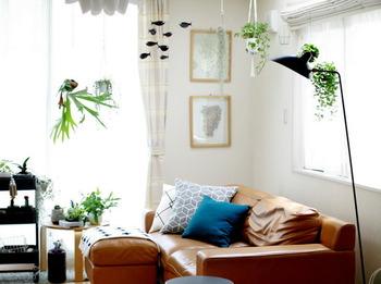 こちらのブロガーさんは、観葉植物を吊り下げて活用。ソファー横にも観葉植物が可愛らしく並べられています。ふわっと植物に包まれるような素敵な空間に仕上がっていますね♪