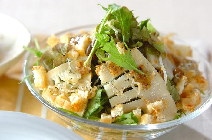 ちょっと新鮮に感じるたけのこを使ったサラダです。水菜、じゃこ、たけのこと食感のいい食材に、焼いた油揚げを加えて香ばしさもプラスした美味しいサラダです。