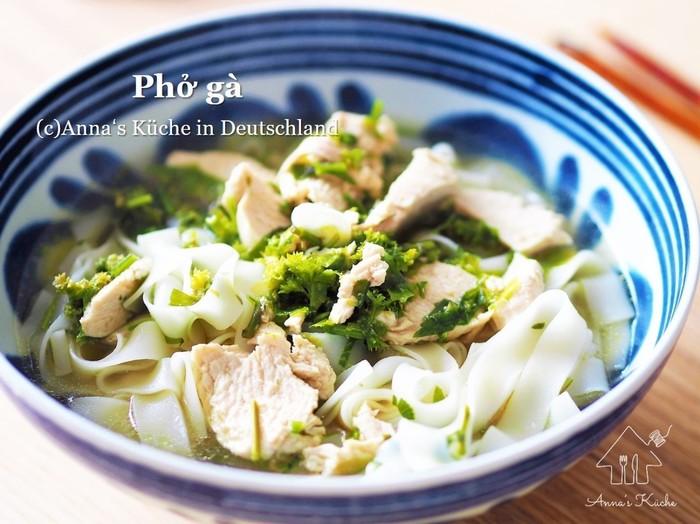 こちらはスープにこだわったフォーのレシピです。鶏むね肉でヘルシー、エストラゴンやパクチー、パセリなどのハーブもたっぷり入っていますよ♪ナンプラーやライムを入れれば、さらに本格的な仕上がりになるのだそう。
