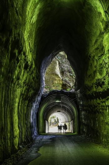 養老渓谷に行ったら絶対に見逃せないのがSNSで話題の世にも不思議な2階建ての「向山・共栄トンネル」。明かり取りのような上部のトンネルから差し込む光が緑がかったトンネル内部を照らすさまは何とも幻想的です。