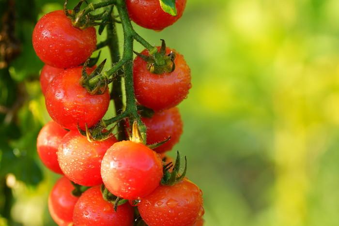 トマトに含まれる成分「リコピン」も、抗酸化効果が期待できます。効率よく摂るなら、トマトジュースを飲むのもいいですね。また、トマトは加熱したり、油で炒めると吸収率が高まるともいわれますので、料理に使うのもおすすめです。