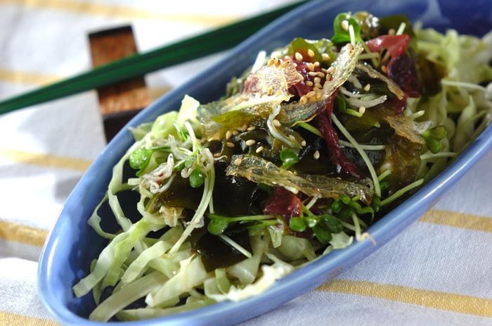 海藻サラダにはキャベツをプラスしてボリュームアップ。細長いブルーのうつわにアレンジした海藻サラダは、とてもヘルシーな雰囲気に仕上がっていますね。