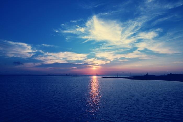 江川海岸は潮干狩りのスポットとしても有名で、東京湾で唯一、自然の干潟が残っているエリアなんです。潮干狩り場の最南端がこの海中電柱を一直線に見られるポイントです。広々とした海と人工物のコラボを存分に味わいたくなりますね。
