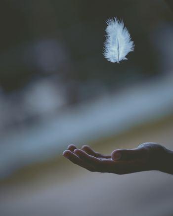 毎日同じことの繰り返しで、楽しいことがない。淡々とすぎていく日常に、不満を抱くこともあるかもしれません。「安閑無事」という言葉は、何も心配することなく、穏やかに暮らせることの尊さに気付かせてくれます。昨日と同じように安らかな日が来ることへの感謝の気持ちを持てば、変わらぬ毎日に幸せを感じることができるでしょう。