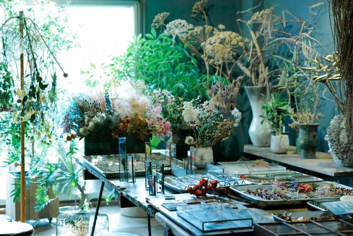 植物の造形美を閉じ込めて。お部屋にひとつ迎えたい【ハコミドリ】のガラスプロダクト