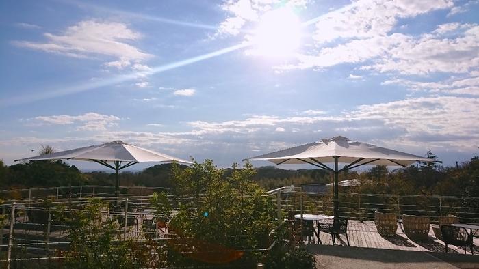 最後はビーチ沿いから離れて、山の上から海を見下ろす高台のカフェをご紹介します。鎌倉駅からバスで20分ほど、見晴バス亭を下車すると、そこは一面の緑に包まれた鎌倉山。一面ガラス張りのおしゃれなパティスリーカフェ「ル・ミリュウ鎌倉山」では、豊かな木々と相模湾を見下ろしながら、ティータイムを楽しむことができます。