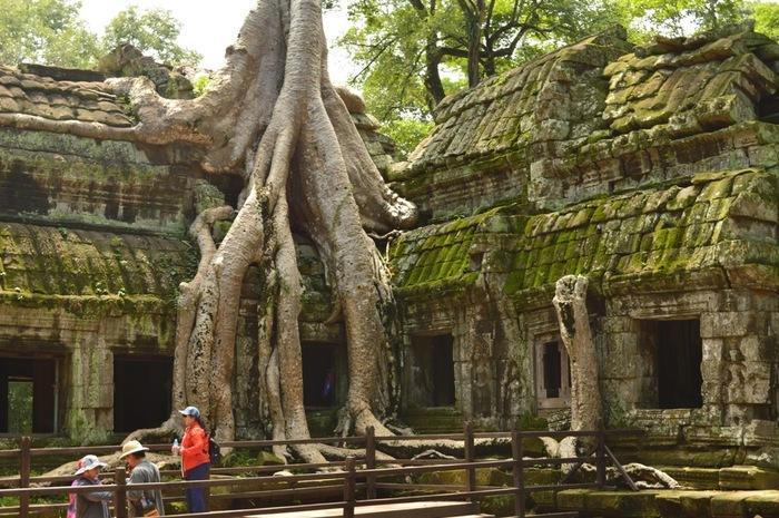 こちらもアンコール三大遺跡の1つ。12世紀に当時の国王が、母親の死を弔うために建てた寺院であると考えられています。 現在ではガジュマルの木が遺跡の建造物に大きく侵食している、生き物の生命力を感じる神秘的な光景となっています。  樹齢300年とも言われるガジュマルが遺跡を支えているという説もあり、遺跡の修復方法に意見が分かれているそうです。 今となってはガジュマルの木も装飾や建造物の一部のようです。まるで寺院にさらに神秘的な雰囲気を加えているかのようです。