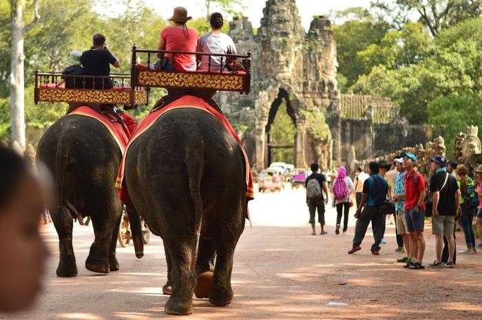 シェムリアップ市街地からアンコール遺跡群へは、カンボジアならではのトゥクトゥクで向かう人がほとんどでしょう。アンコール遺跡群の中もトゥクトゥクをチャーターしていれば、各コースに沿ってそれぞれの場所へ連れて行ってくれます。  しかし、なんとアンコール遺跡群を象に乗って廻ることができるコースがあります。広い敷地内の遺跡から遺跡への移動はトゥクトゥクの方が断然早くて便利ですが、たまにはゆっくり象に乗って景色を楽しみながら廻ってみませんか?  1日にで全てを見終わることはできないのですから、急いでも仕方がないかもしれません!