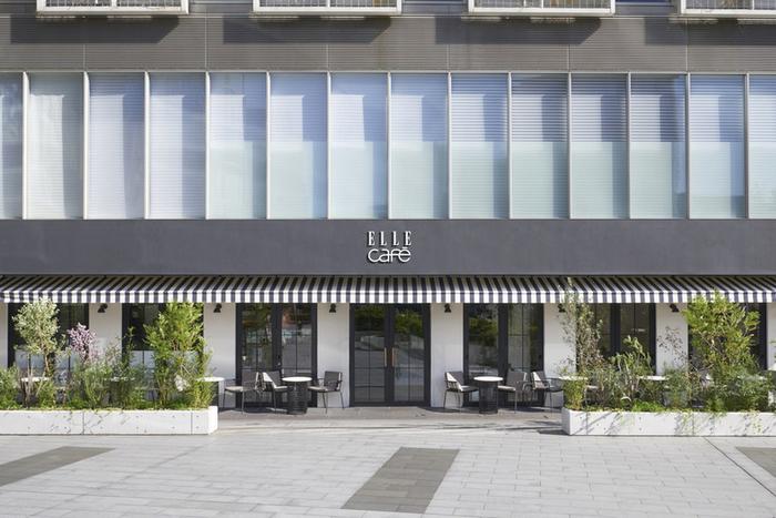 オーガニック食材を使用したカフェレストラン「ELLE cafe Aoyama (エル カフェ アオヤマ)」は、東京メトロ表参道駅B2出口より徒歩3分ほどの所にあります。1Fはカジュアルスタイルのカフェスペース、2Fはレストランスペースです。