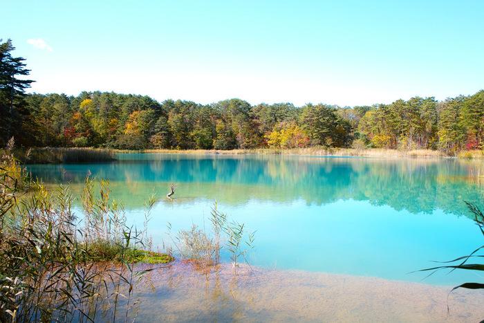 裏磐梯は、磐梯山の北側のこと。ここにある「五色沼湖沼群」は2016年にミシュラン・グリーンガイド1つ星に認定された神秘のスポットです。毘沙門沼・赤沼・みどろ沼・竜沼・弁天沼・るり沼・青沼・柳沼などの数多くの湖沼が点在していて、沼によってさまざまな色が見られることから「五色沼(ごしきぬま)」という名前がつけられました。