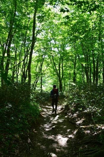 磐梯山の登山ルートは6つほどありますが、八方台登山口は山頂までの高低差が少なく初心者も登りやすいです。登山道も広くて歩きやすいので、女子同士でも安心です。