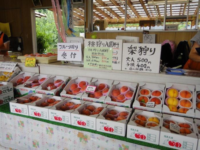 """福島市の西側に広がる福島県道5号線は、通称「フルーツライン」と呼ばれています。約14kmにわたるこの区間には果樹園が多くあり、フルーツ狩りができる観光農園もたくさんあります。桃やさくらんぼ、梨、ぶどうなど""""フルーツ王国ふくしま""""の味を満喫できますよ。"""