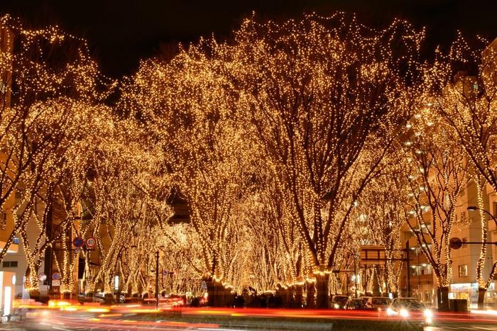 「SENDAI光のページェント」は、冬の仙台の夜をきらびやかに演出するイベントです。1985年(昭和60年)から毎年12月に開催されていて、数10万以上のLEDが取り付けられたケヤキ並木が美しく輝いています。冬のデートの定番スポットとしても人気です。