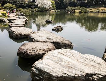 東京メトロ清澄白河駅から徒歩3分。清澄庭園は泉山、築山、枯山水をメインとした回遊式林泉庭園です。全国から取り寄せた名石は見ごたえがあります。