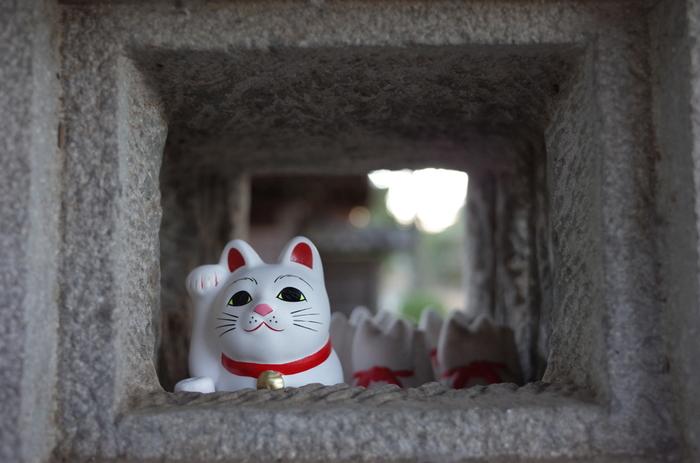 境内のいたるところにみられる招き猫たちは、まさにフォトジェニックなアイドルです。ずらりと並んだ招き猫たちは、大きさはもちろんのこと、みんな表情が微妙に違っていて、じっくりと観察したくなります。