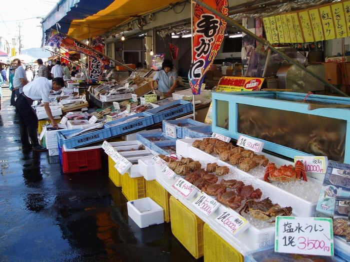 食べ歩き&イカ釣り体験も♪【函館朝市】おすすめ海鮮丼・営業時間・おみやげガイド