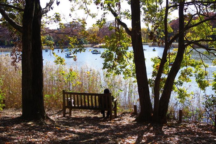 広々とした公園は、昔から愛されてきたフォトジェニックスポットです。緑の木々の下、深呼吸をしながら撮影スポットを探したら、心も体も癒されそう。
