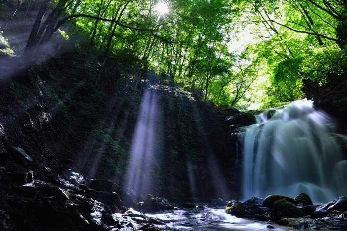 木漏れ日や水の流れに日々の喧騒を忘れることができる軽井沢。そんな軽井沢ではホテルもこだわりたいもの。軽井沢のおすすめホテルをご紹介します。
