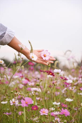 時間と、その人ができる事柄には、限りがあるものです。そして、「やるべきこと」が溜まっていく日常は、避けようがありません。  でも、「やるべきこと」を抱え込みすぎて、心や体が、折れてしまっては、本末転倒ですよね。  それでは、そんな日常と、折れず、しなやかに付き合っていくには、どうしたら良いのでしょうか。