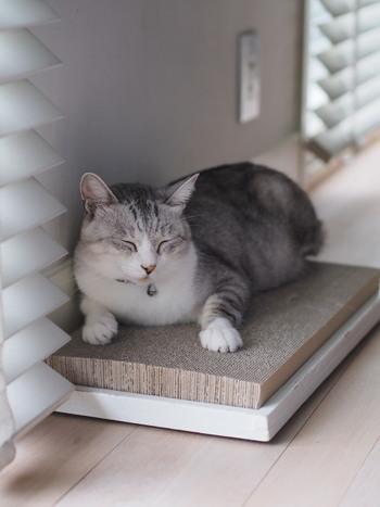 こちらは爪とぎ台を自作されたものだそう。座り心地がよくて、猫ちゃんも第二のベッドとして活用しています。