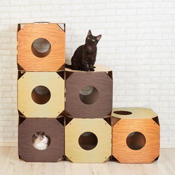 爪とぎボードがついた猫用のシェルフは、いくつも組み合わせることで、迷路のような楽しさを作り出すことができます。木目調のカラーリングはナチュラルテイストのお部屋にもよく合いますね。