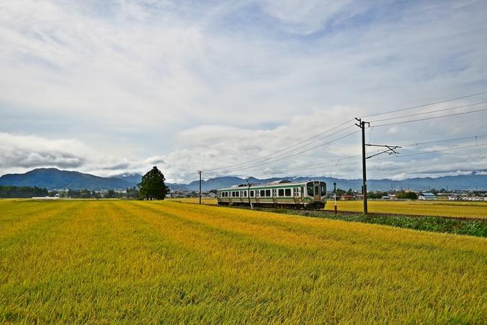 会津若松へは東京から東北新幹線を利用するのが便利です。東北新幹線で郡山駅へ着いたなら、磐越西線を利用して会津若松駅へ。ローカル線でのどかな田園風景を楽しみながら、約3時間で到着することができます。  車の場合は東京から東北自動車道、磐越自動車道を利用して、約3時間半で会津若松へ到着します。