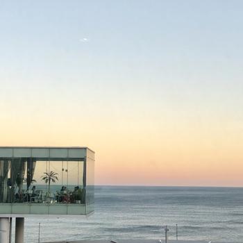 日立市出身の世界的建築家、妹島和世さんがデザイン監修しているカフェ。日立駅に隣接しているため、世界で最も美しい駅舎の一つとして高く評価されています。ガラス貼りの店舗内は、開放感バツグンです!