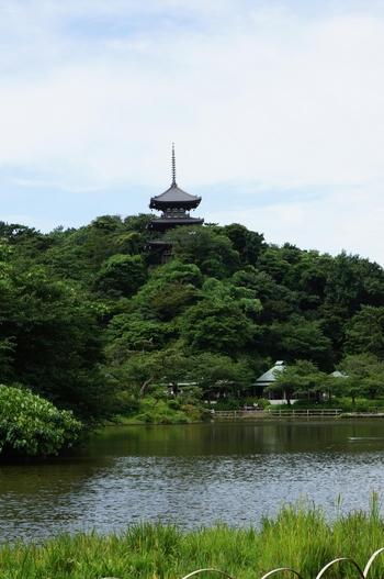 """園内のほぼすべてから見ることができる「旧燈明寺三重塔」は、1914年(大正3年)に移築されたもの。元々の名前は「東明寺」でしたが、江戸時代に宗派が変わった際に燈明寺に改名された歴史があります。その名残りで、瓦には""""東明寺""""と刻印されているんですよ。"""