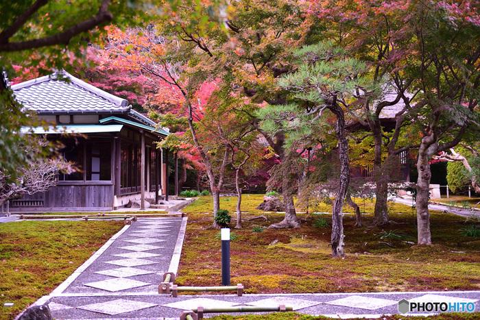創建年は不明ですが、鎌倉公方の足利基氏が父である尊氏の供養のために建立したと伝えられています。手入れの行き届いた境内は静寂に包まれ、別世界にいるかのような気分です。