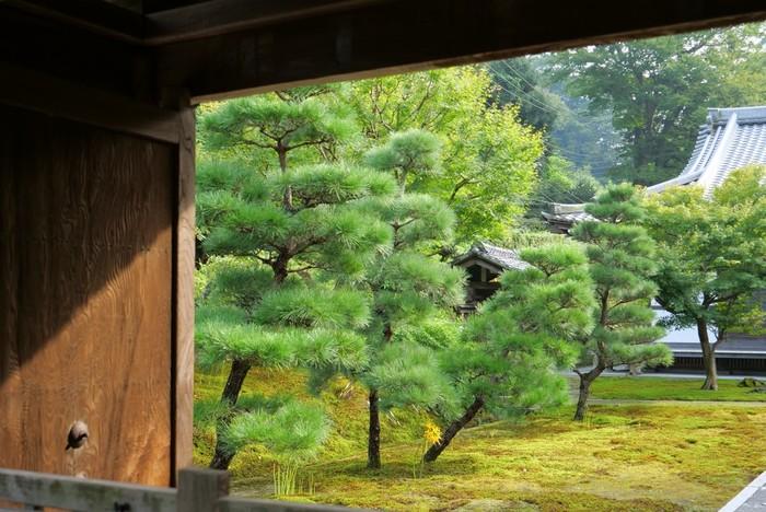 北鎌倉駅から歩いて10分ほどのところにある「長寿寺(ちょうじゅじ)」は、春(4月~6月)と秋(10月~11月)の金・土・日・祝日限定で公開される珍しいお寺。普段は一般開放されていないので、人が少なくゆっくりと散策できます。