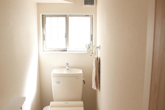 カゴなどに入れて床に置くか、布製の袋に入れてトイレに吊るしておけば、消臭剤代わりになります。竹炭自体には香りがついていないので、強い香りの消臭・芳香剤が苦手な方でも安心して使うことができます。