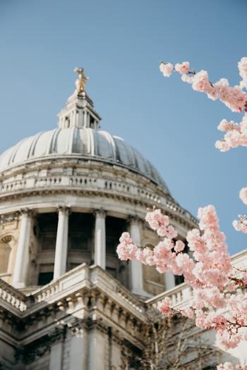 いつもお天気が悪そうなイメージのイギリスですが、春や夏は穏やかなお天気が続きます。春には桜が咲いているのを見かけることも。