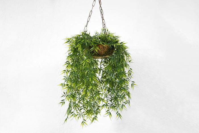 """お部屋が狭かったり、置き場所に迷ったり。観葉植物を迎えるとなると、どうしても身構えてしまう方も多いですよね。そんなときは、""""吊るして""""楽しむのはいかがでしょう? 空間に立体感や奥行き感が増して、お部屋に広がりをもたせることもできます。"""