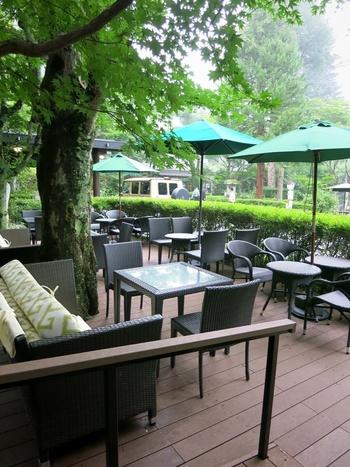 緑に包まれたカフェテラスも。爽やかに通り抜ける風を感じながら、信州産紅玉を使ったアップルパイや昔ながらのカスタードプリンなどが楽しめます。