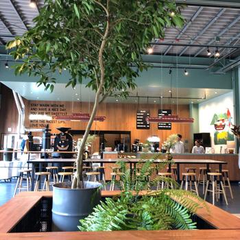 店内には大きな焙煎機があり、浅煎りから深煎りまで6~7種類ほどの豆が用意されています。天井も高く緑豊かな明るい店内は、初めての人でも入りやすく、誰でも気軽に本格的なコーヒーを楽しめます。
