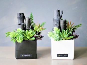 おしゃれな入れ物や植物も一緒に飾ってあげれば、見た目にもおしゃれで湿気対策にもなるのでおすすめです。窓辺など好きな場所に飾りましょう。