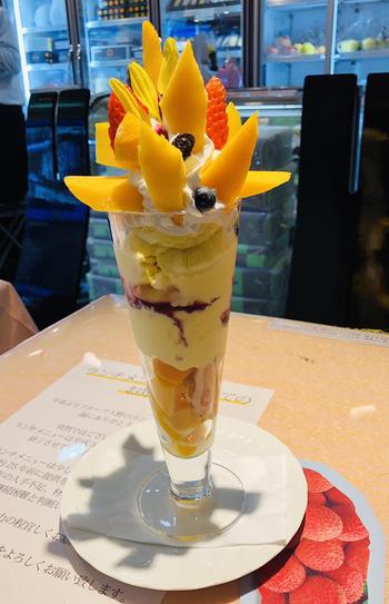 宮崎観光で訪れたらぜひ食べておきたいのが、名物のマンゴーをたっぷり使った「マンゴーパフェ」。トロッと濃厚でトロピカルな味わいは、虜になる美味しさです。