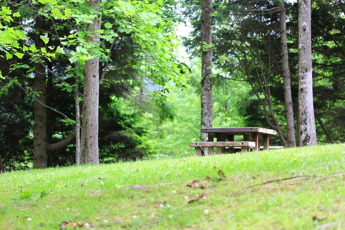 春の陽気に誘われて…。公園でピクニックしたり、キャンプしたりと、外へお出かけする機会が多くなる季節です。春のお出かけと言えば、自然の中で食べるランチが断然おすすめ!
