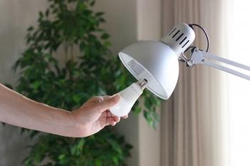 電気は現在、一般的にLED、白熱球、蛍光灯の三種類が使われています。おうちの電気として最もポピュラーなのが白熱電球で、三種類の中で一番リーズナブルに入手できるという特徴があります。ただ、電気代はLEDや蛍光灯に比べて高いので、点灯する時間が短い場所での使用がおすすめです。
